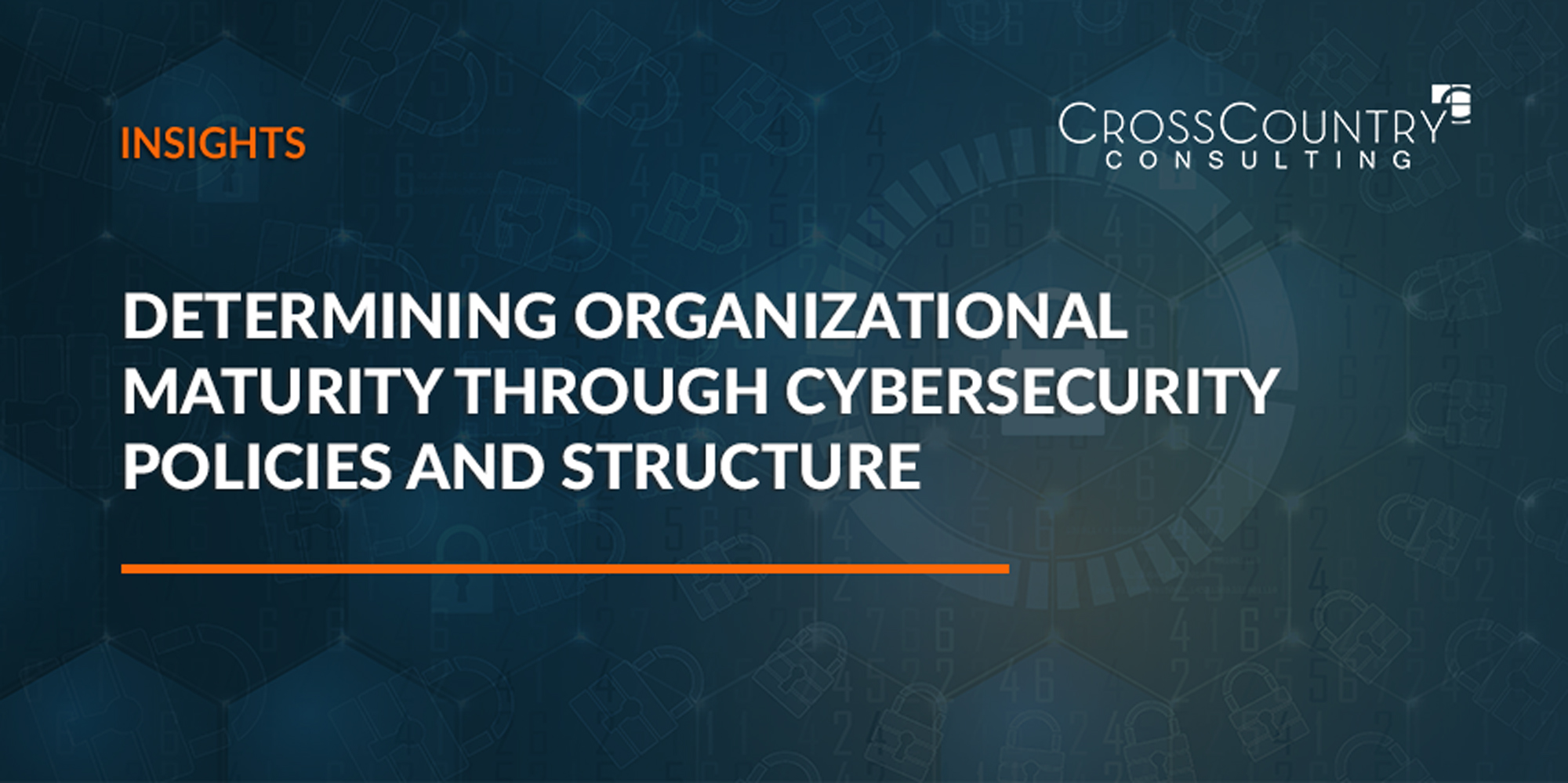 Determining Organizational Maturity through Cybersecurity Policies and Structure