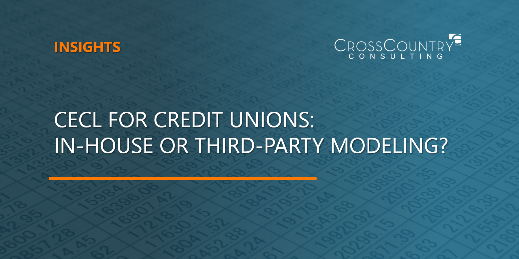 CECL for Credit Unions: In-House or Third-Party Modeling?