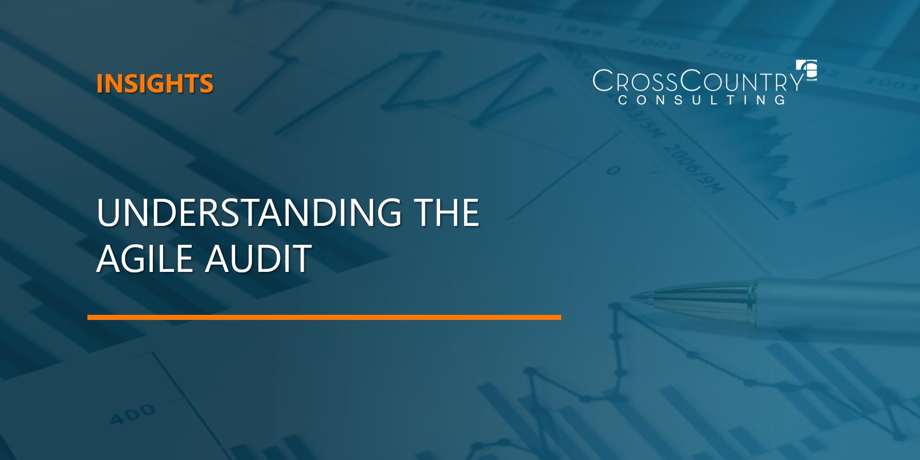 Understanding The Agile Audit